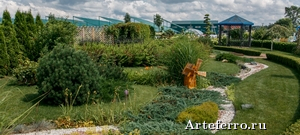Декоративные растения и планирование ландшафтного дизайна