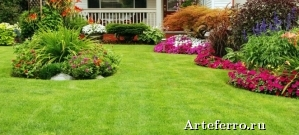 Какой газон лучше всего сделать в саду?